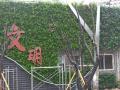 立体绿化设计