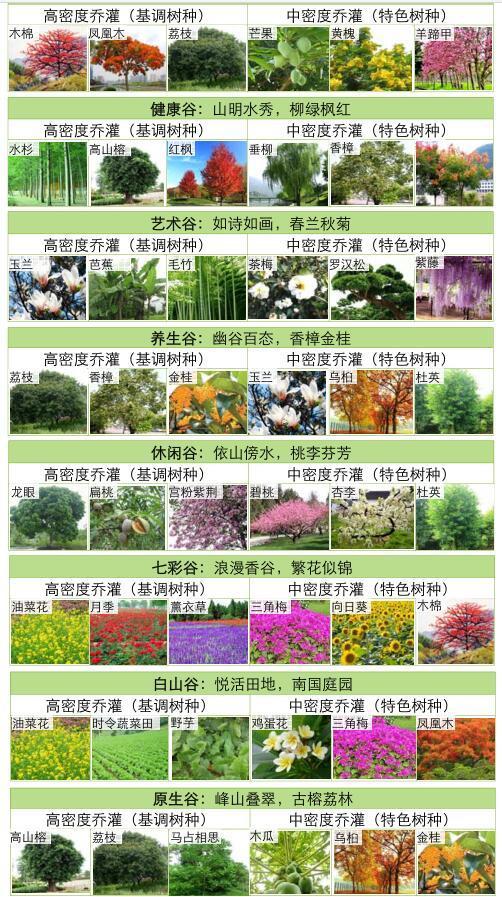 [广东]美丽乡村示范点某镇村庄详细规划景观方案设计PDF(313页)-绿化种植8大主题分区