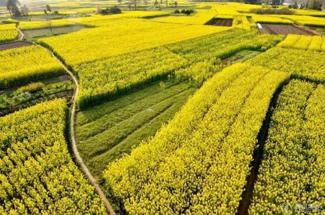 农业景观的意义_7