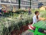 在菜园子旁休憩,国内的城市会有吗?
