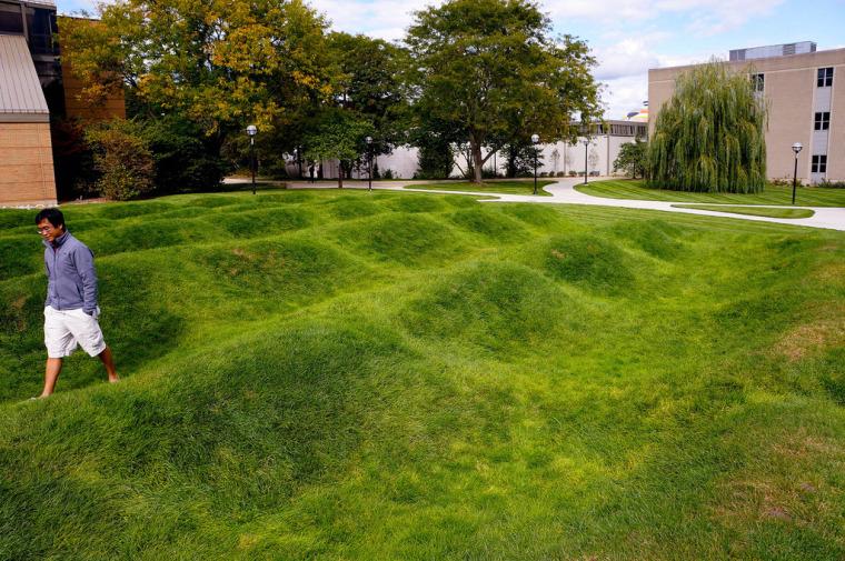 美国绿色波形草坪-3