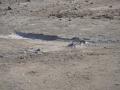 砂砾基层混合料不固结\无侧限抗压强度不达标什么原因?怎么处理