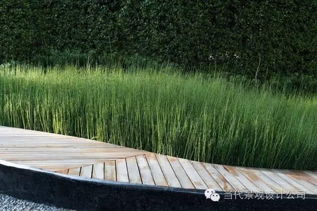 泰国清迈思绪公园景观设计_5