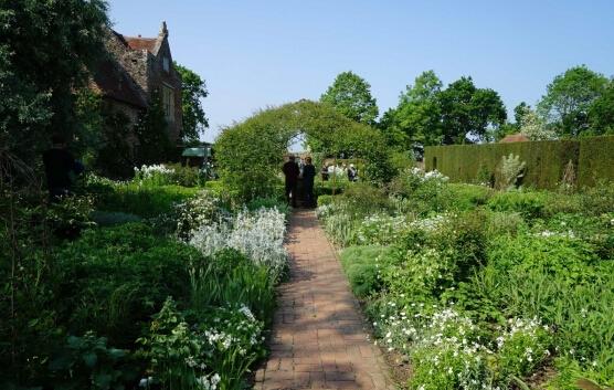 最个性的花园,是要靠单色植物景观来打造滴!