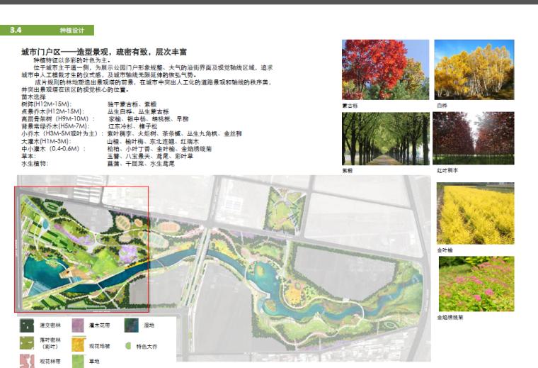 [吉林]某公园景观深化设计方案_11