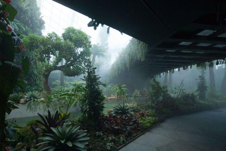 新加坡世界级超级温室花园-5