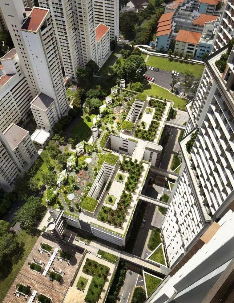 新加坡经典高端景观考察活动_63