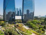 [景观前沿]城市中的大西洋森林:巴西圣保罗城市公园