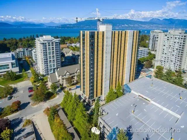 谁说木头盖不了高层?2个月完成的18层全木结构大楼展示逆天技艺