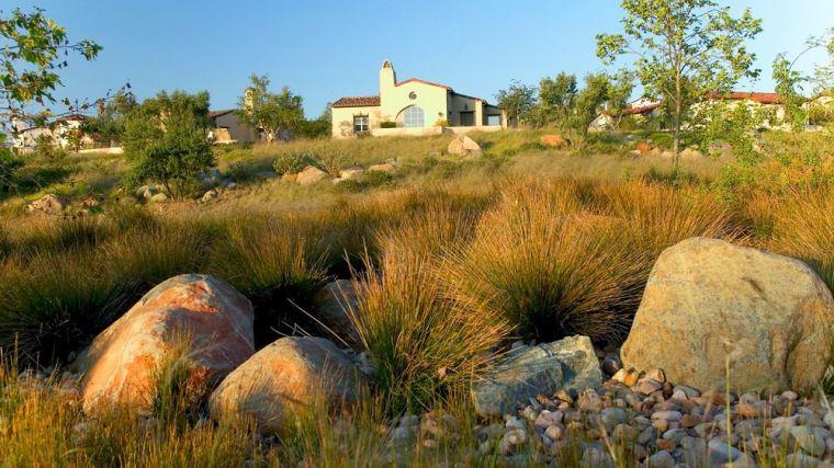 美国Santaluz社区景观-5
