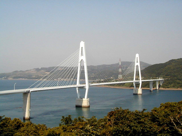 第一篇(1)斜拉桥与悬索桥总体布置与结构体系