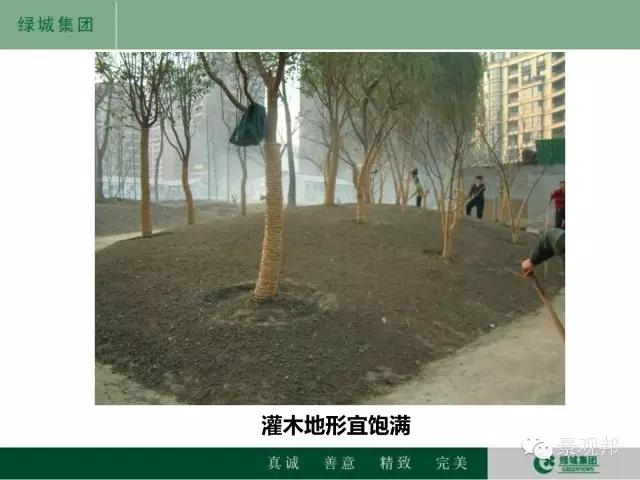 干货|绿城精致景观营造工艺工法篇倾情呈现-20160518_104945_106.jpg