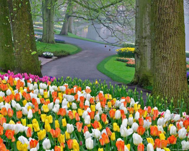 外国的园林艺术一定要看!_20