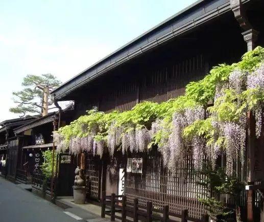 10个日本最美小镇_18