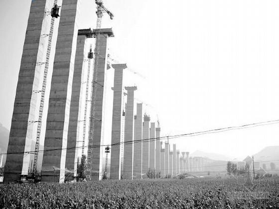 [云南]45m高墩双线特大桥承台大体积混凝土施工方案23页
