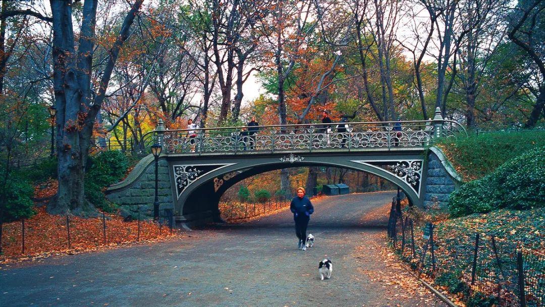 美国景观设计之父|奥姆斯特德和他的纽约中央公园_20