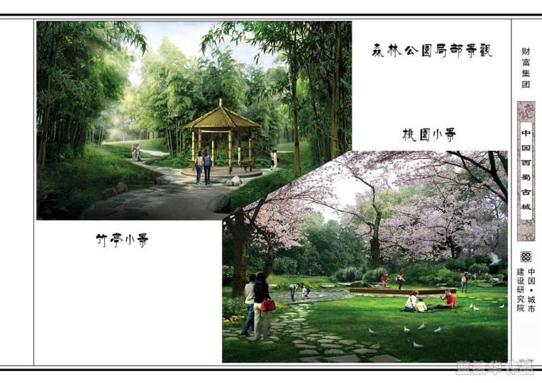 #我的年度作品秀#中国西蜀古城_31
