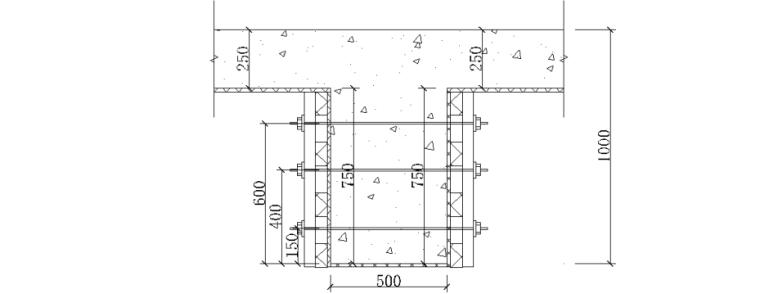 停车场及广场工程高大模板专项施工方案专家论证_2