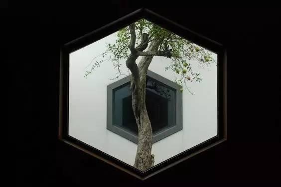 无窗,不园林!_21