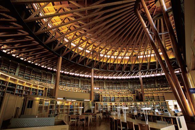 直径44m的半圆形和伞构造支撑起多雪地区的屋顶
