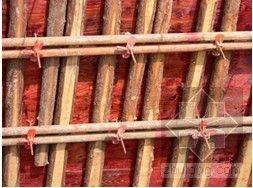 某大跨度厂房工程施工方案(钢结构、框架)