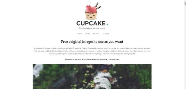 99%的景观设计师都在这48个无版权图片网站找图!_9