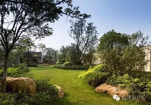一个会种树的设计师,住宅每平方溢价3000元_42