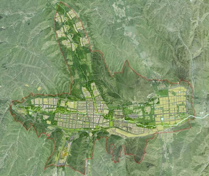 [青海]西宁多吧新城概念规划和总体城市设计(高原地貌)-[青海]西宁多吧知名地产概念规划和总体城市设计.C-2总平面图