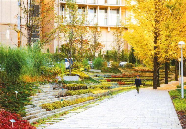 创价大学里环球广场景观-14