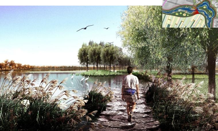 [辽宁]国家试点湿地公园景观规划设计文本-湿地步道效果图