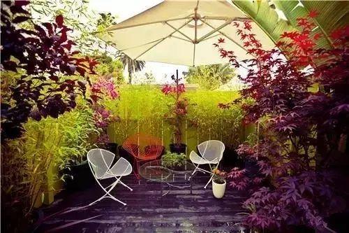 第一次设计小庭院,如何一鸣惊人?