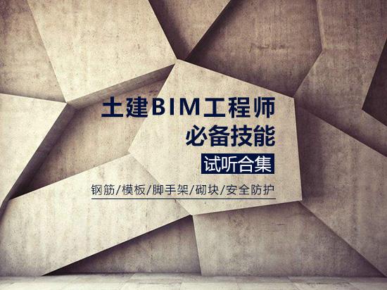 土建BIM工程师必备技能训练营【试听合集】