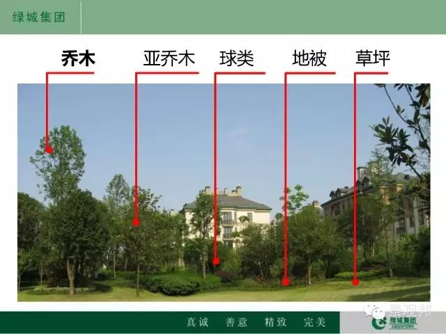 干货|绿城精致景观营造工艺工法篇倾情呈现-20160518_104945_108.jpg