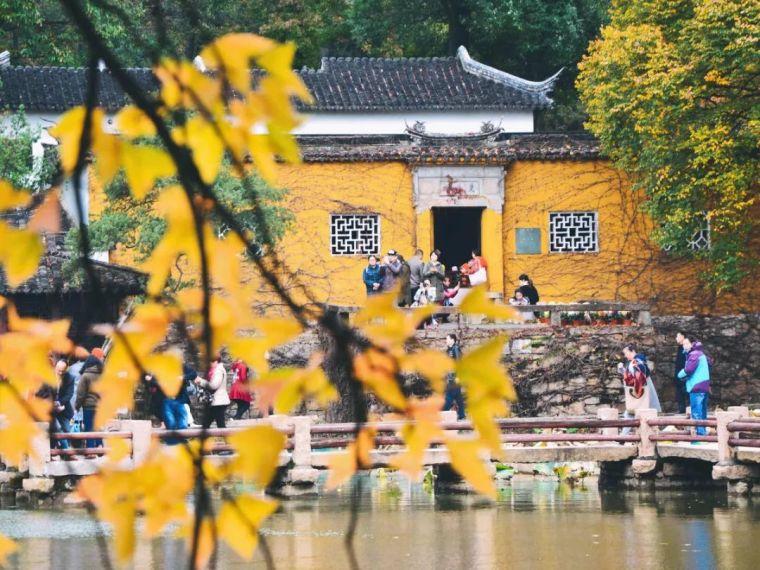 中国最美红叶观赏指南,错过再等一年_30