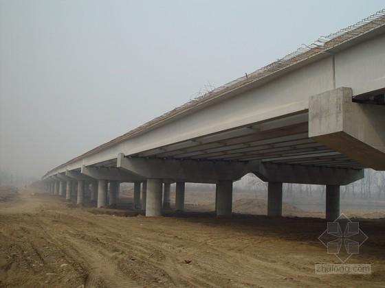 u型梁施工组织资料下载-某预应力混凝土简支T梁大桥(实施)施工组织设计