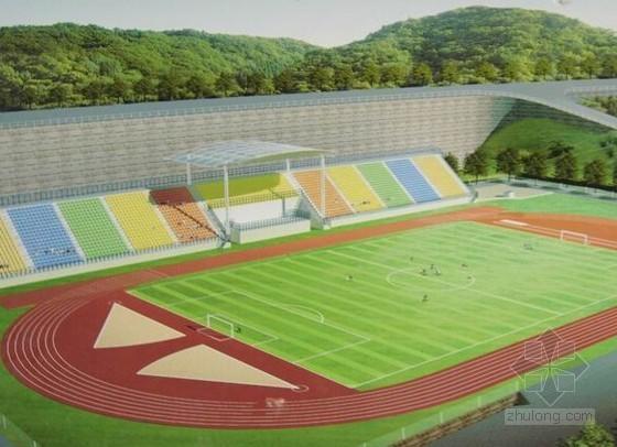 [湖南]学校塑胶运动场建设工程招标文件