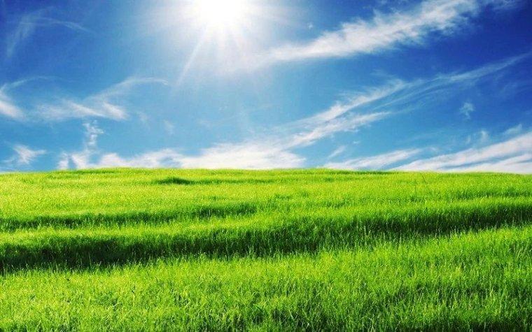 送您一股清新的田园风。_7