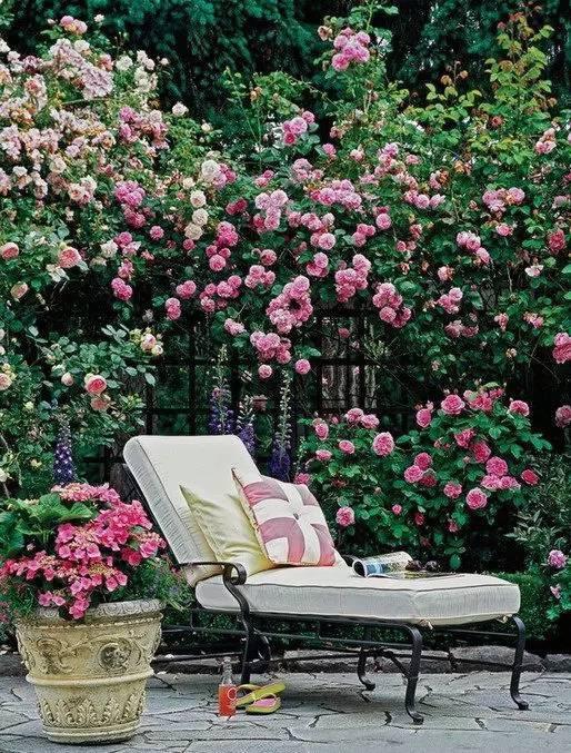 有个庭院,将是今生最大的幸福_37