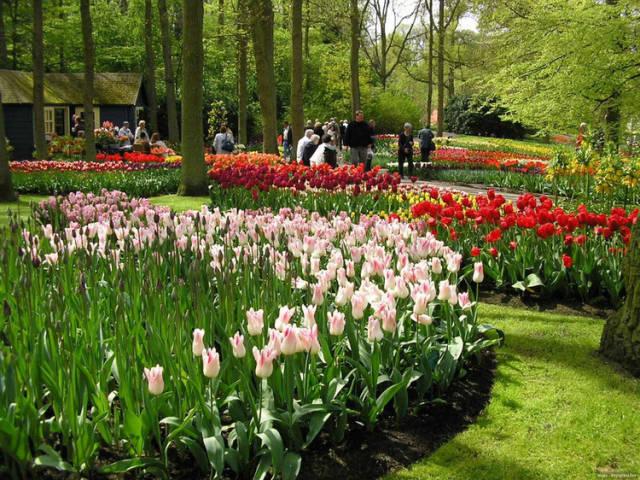 外国的园林艺术一定要看!_13