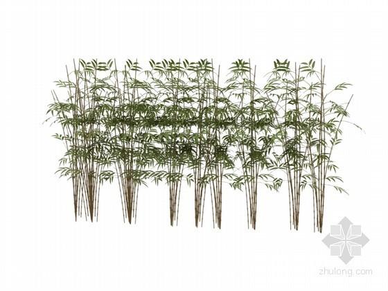 景观植物3D模型下载