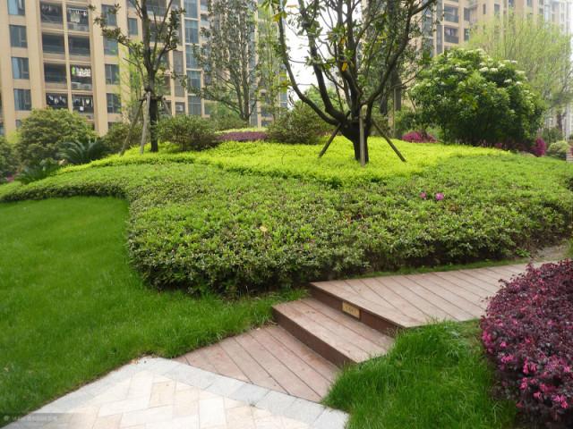植物设计中花卉灌木植物色块的应用处理_5