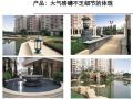 [成都]房地产项目营销战略与策略方案(191页,附案例)