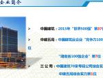 湖南省中建·江山壹号项目工程质量常见问题汇报材料