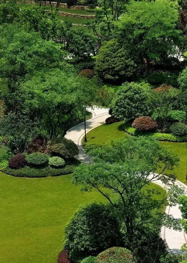 实用 景观植物设计方法(图文解析,值得收藏)_11
