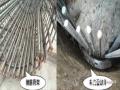 水下灌注桩混凝土生产与施工质量控制