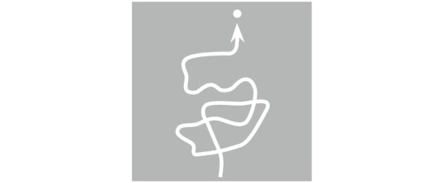 [干货]16种景观路径类型_7