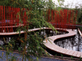 """""""雨水公园""""雨水管理在景观设计中的应用"""