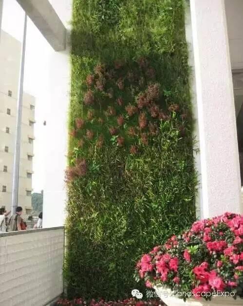 景观设计中立面绿化的做法