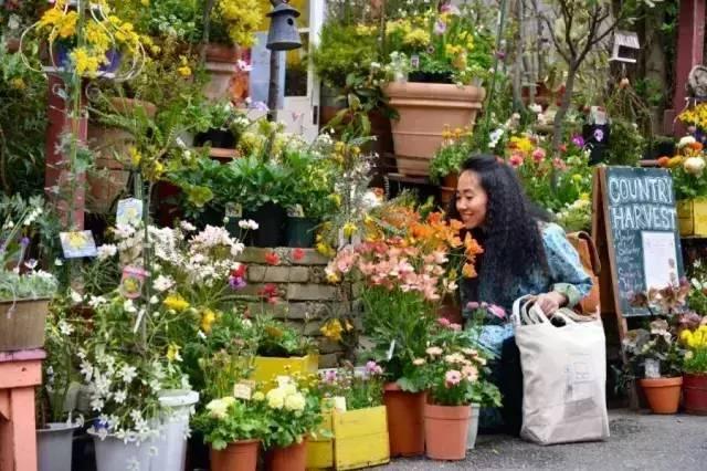 """每年40万买花,只为北京二环内一座""""森女花园""""~"""