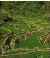 [黑龙江]高标准农田建设项目年度实施方案